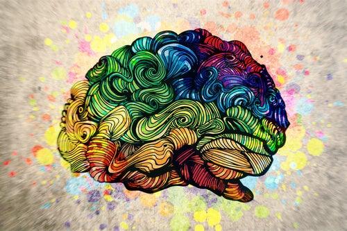 La imagen tiene un atributo ALT vacío; su nombre de archivo es cerebro-coloreado.jpg